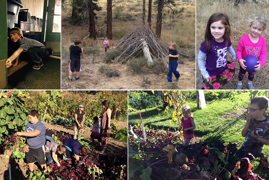 MVE After School Childcare in the Garden & Woods