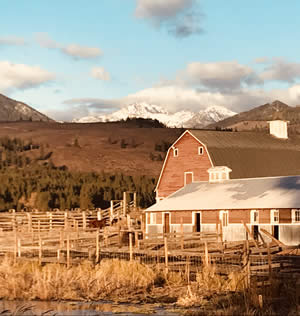 Methow Barn in Autumn Light