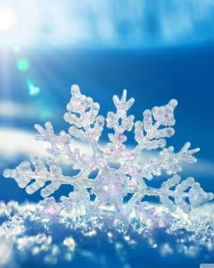 Snowflake in the sun